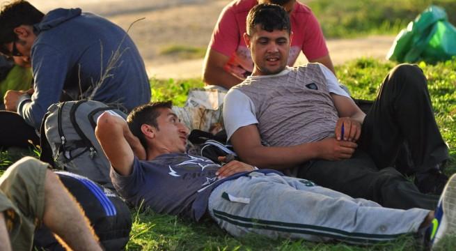 Az első menekültek Illocska határában 2015. szeptember 17-én. Fotó: Kacsúr Tamás