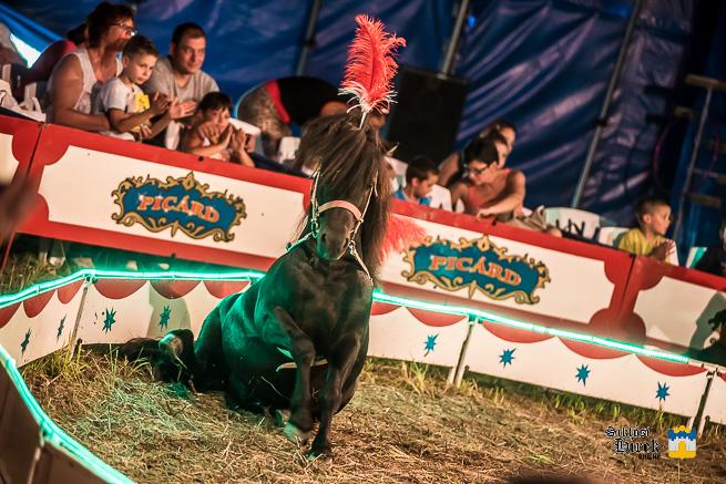 cirkusz-2