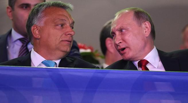 Putyin a cselgáncs vébén. Fotó: Kovács Tamás