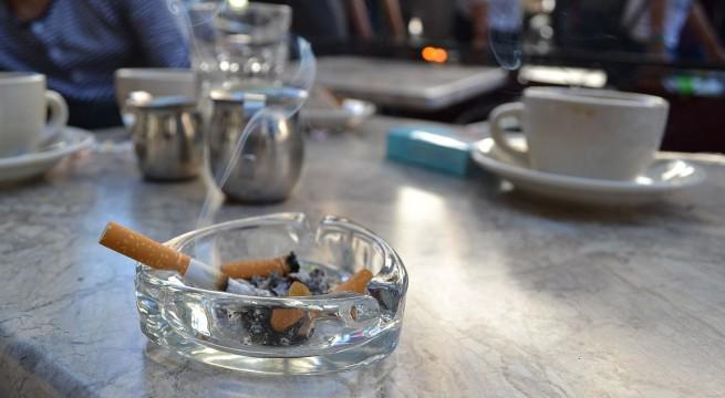 hamutarto-cigi
