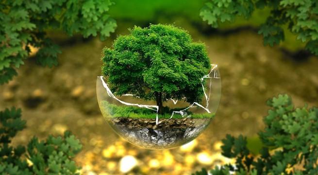 kornyezetvedelem
