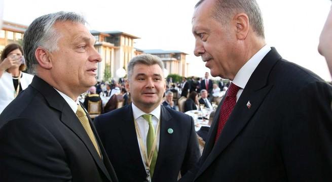Recep Tayyip Erdogan újraválasztott török elnök fogadja Orbán Viktor miniszterelnök gratulációját. Fotó: Török elnöki hivatal