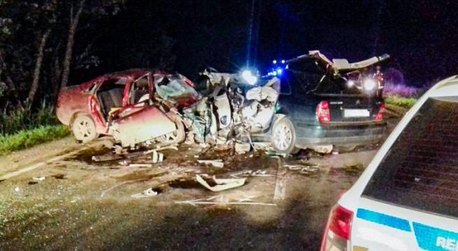 Halálos baleset Fegyvernek és Kenderes között vasárnap este. Rendőrségi felvétel.
