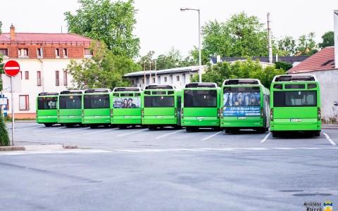 buszokpecs