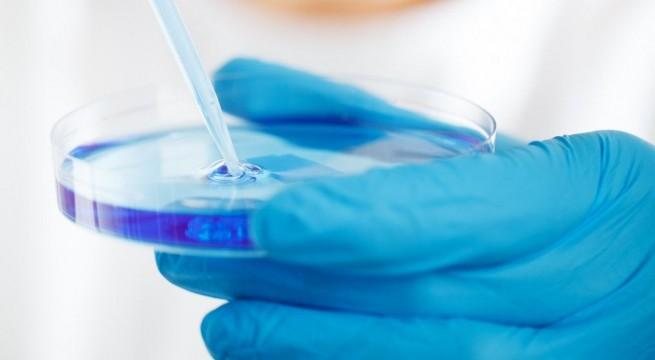 labor-teszt
