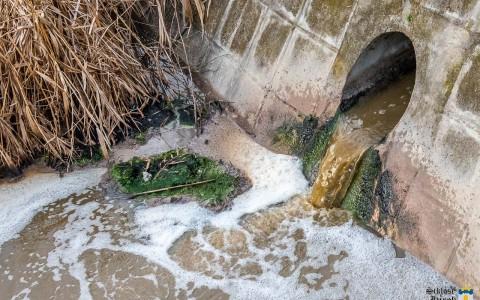 Barna, bűzös víz folyik a Lankába Siklós határában 2021. március 30-án. Képünk nem illusztráció.